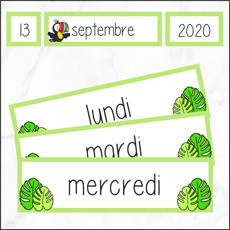Kalender – toekan – Frans